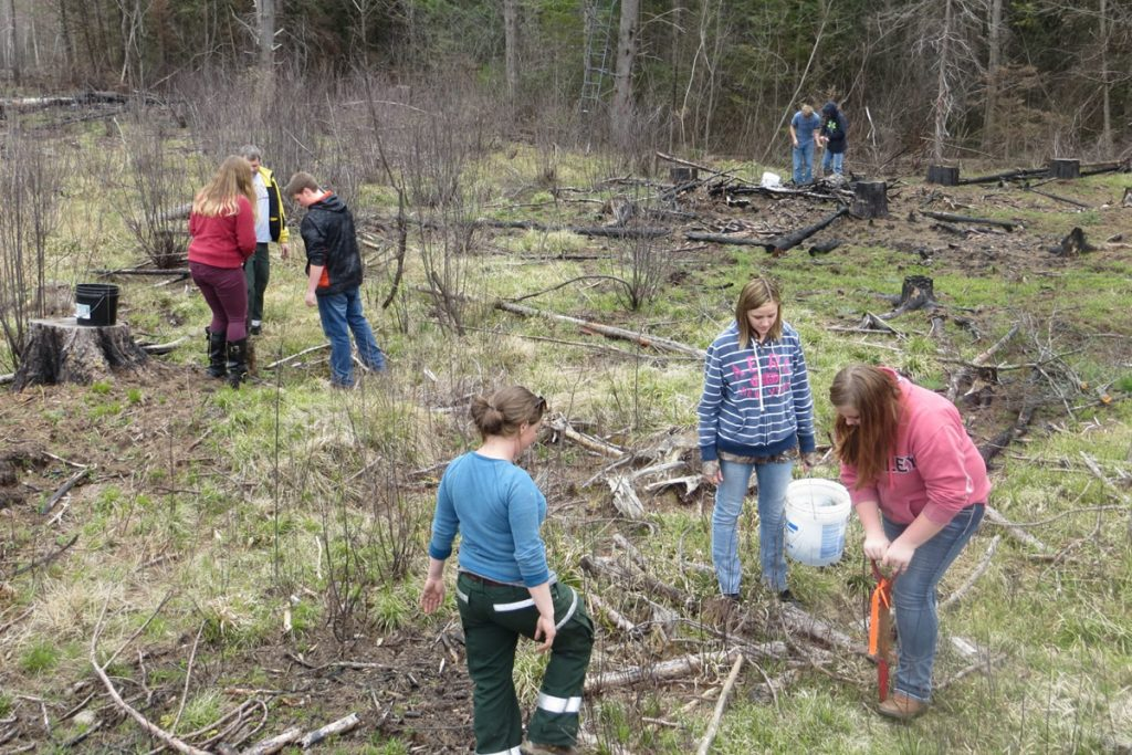 wisconsins-school-forest-program